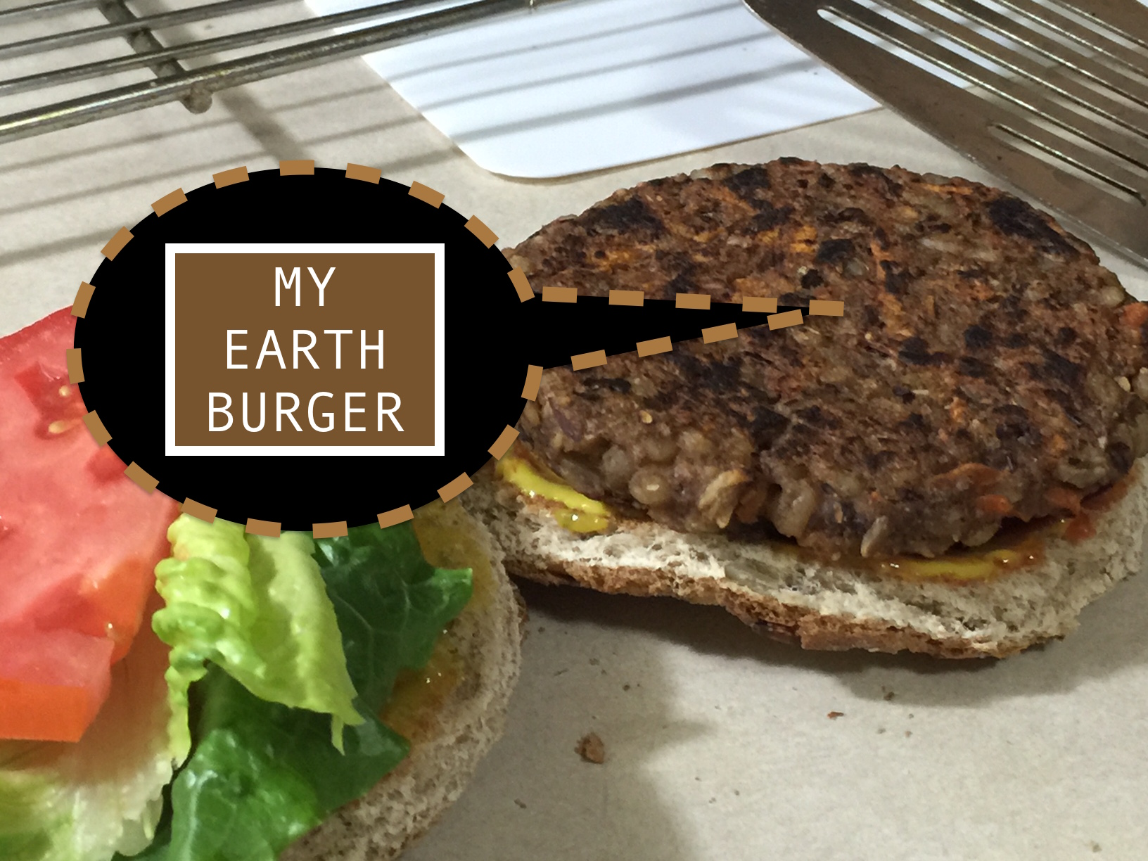 MY EARTH BURGER